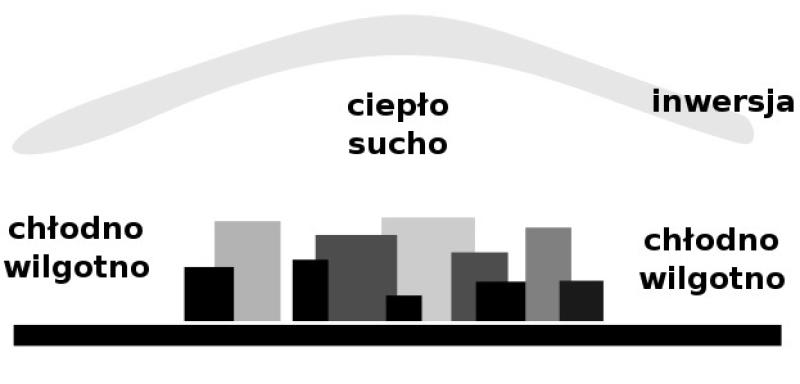 Schemat miejskiej wyspy ciepła (Micgryga (CC BY 3.0)/Wikipedia)