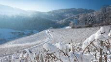 W Bieszczadach 30 cm śniegu